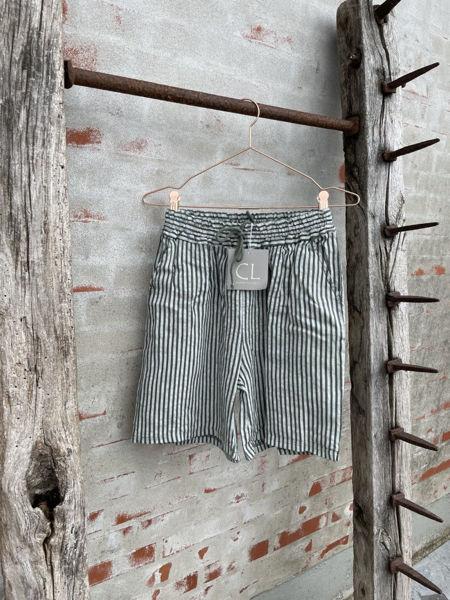 Cabana Living Shorts Stripe Military