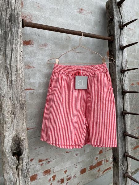 cabana Living Shorts Stripe Pesca